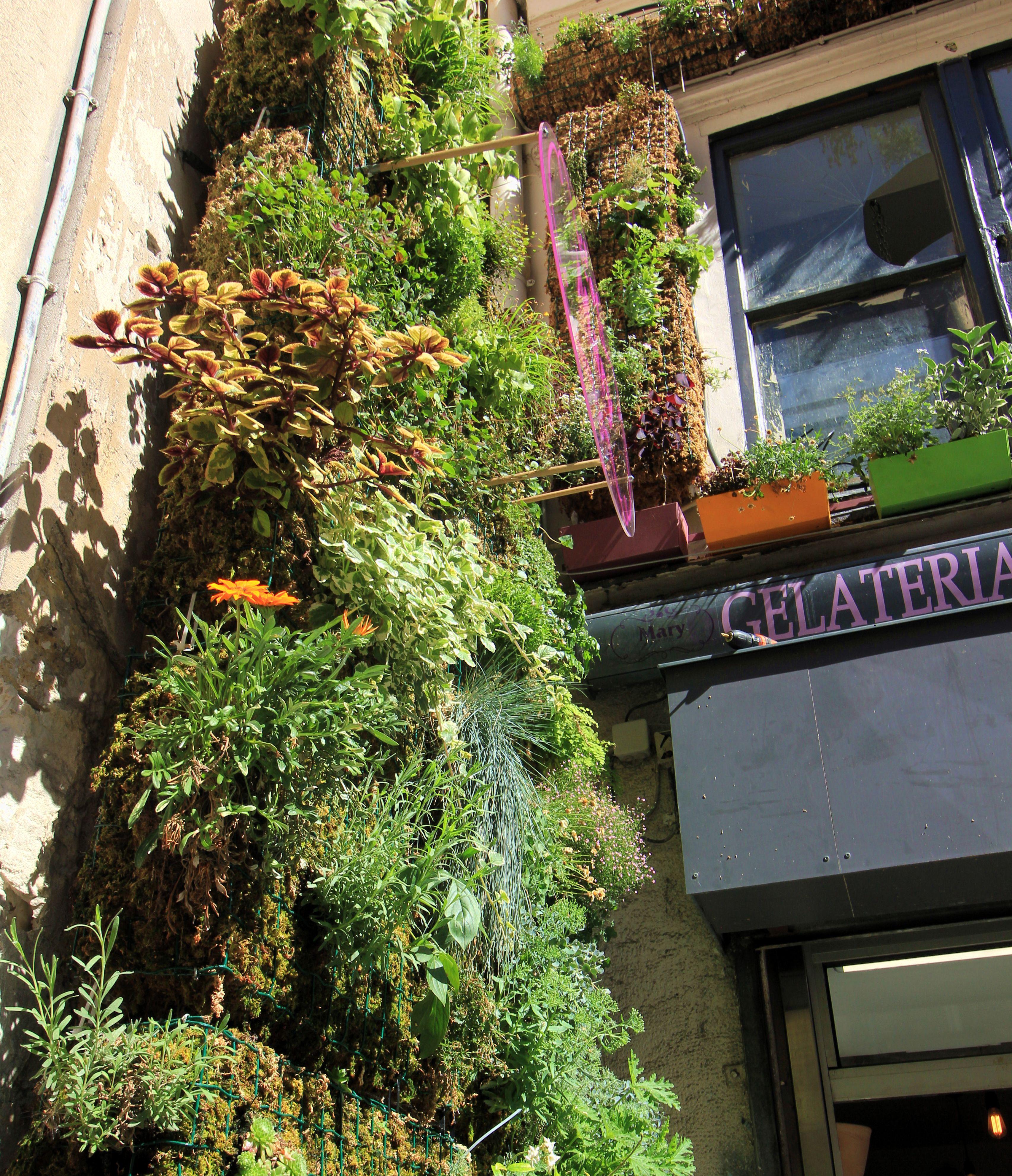 Jardinier vertical - Details